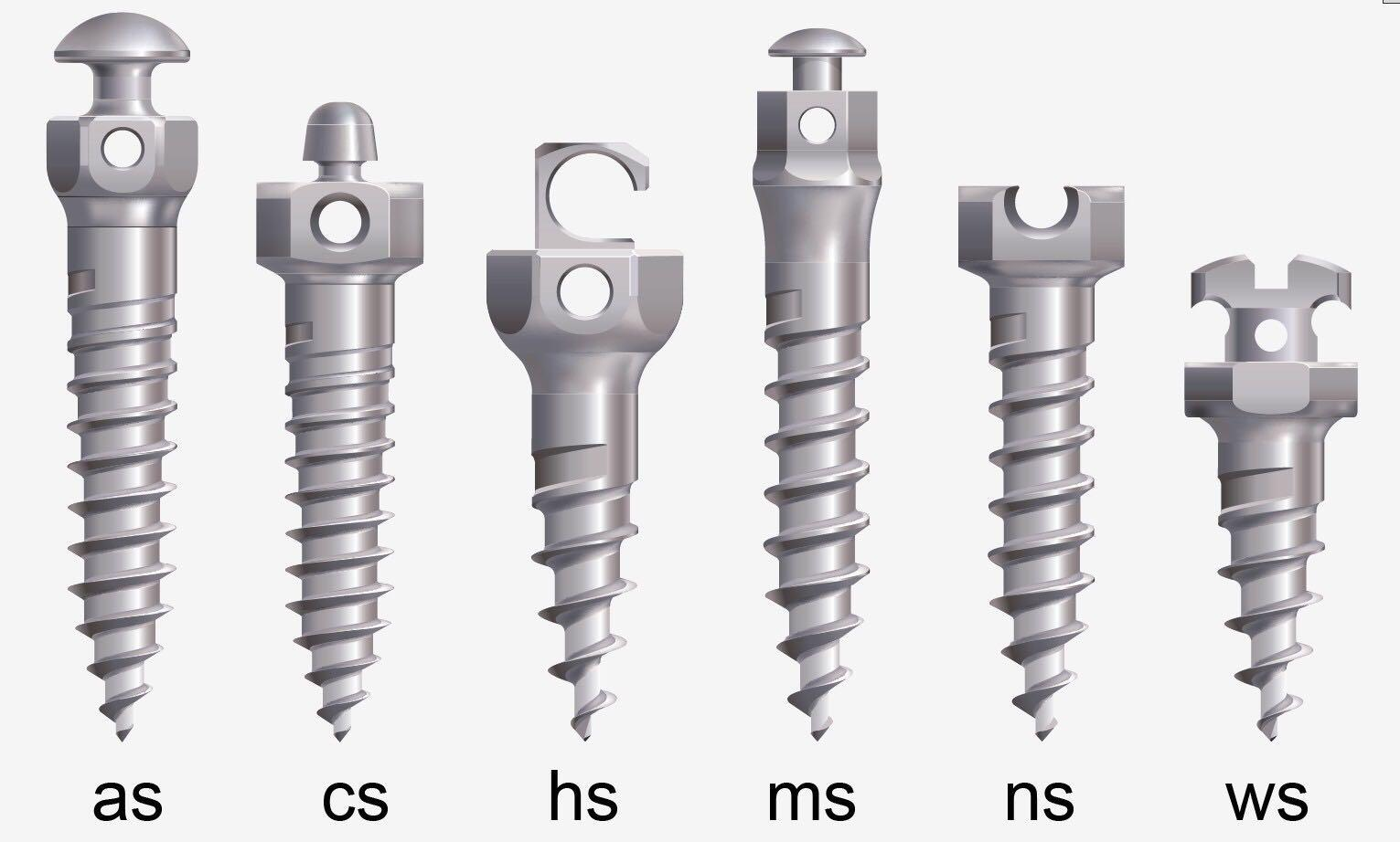 Anchorage Screw